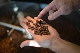 """Kaffeerösterrei """"Ambilini"""""""